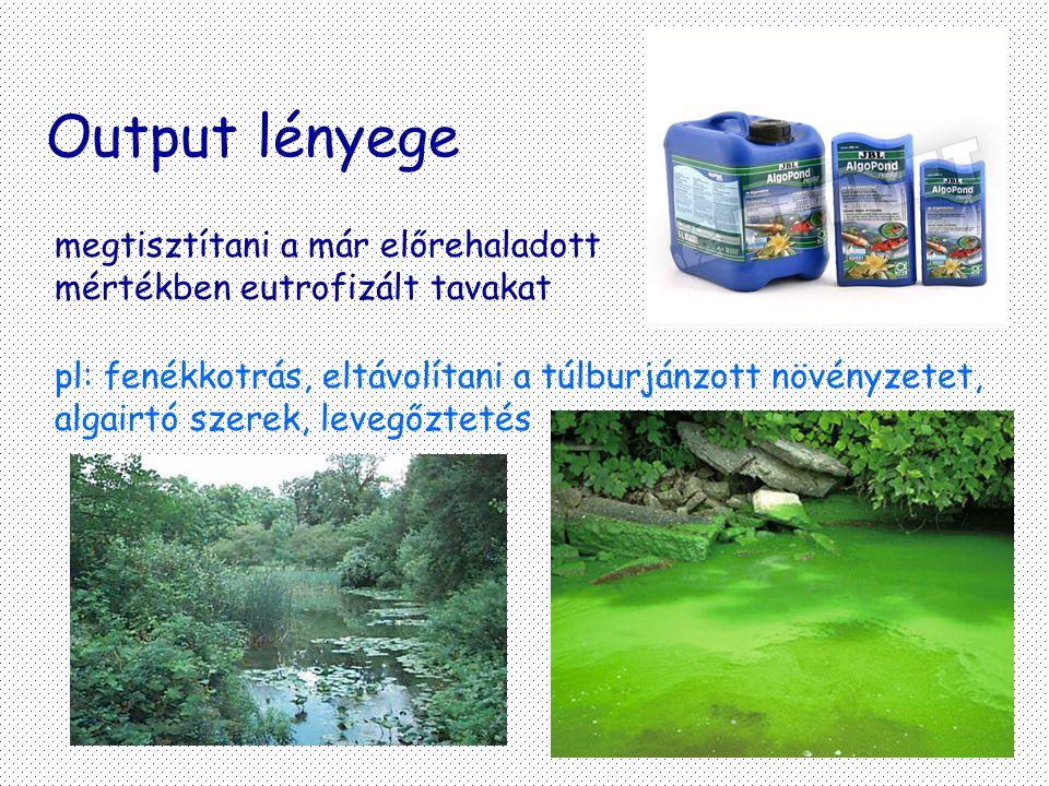 Output lényege megtisztítani a már előrehaladott mértékben eutrofizált tavakat pl: fenékkotrás, eltávolítani a túlburjánzott növényzetet, algairtó sze