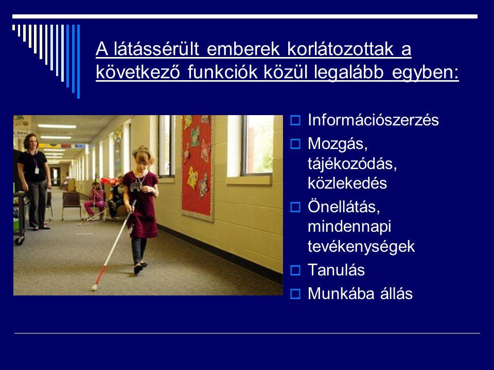 A látássérült emberek korlátozottak a következő funkciók közül legalább egyben:  Információszerzés  Mozgás, tájékozódás, közlekedés  Önellátás, min