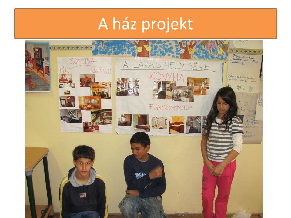 A ház projekt