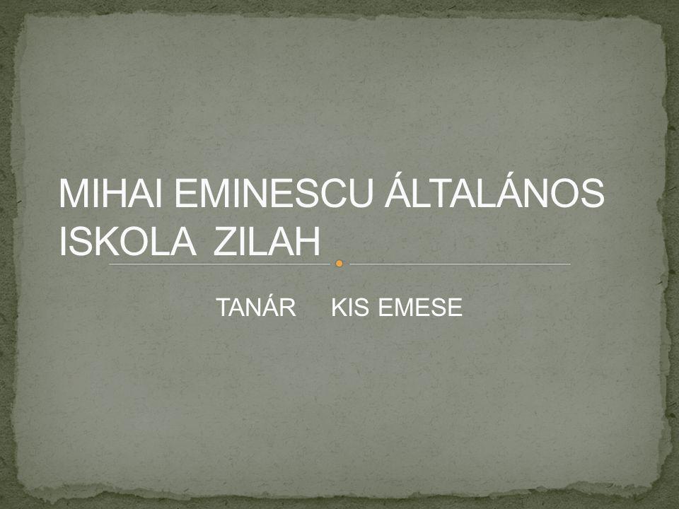 TANÁR KIS EMESE