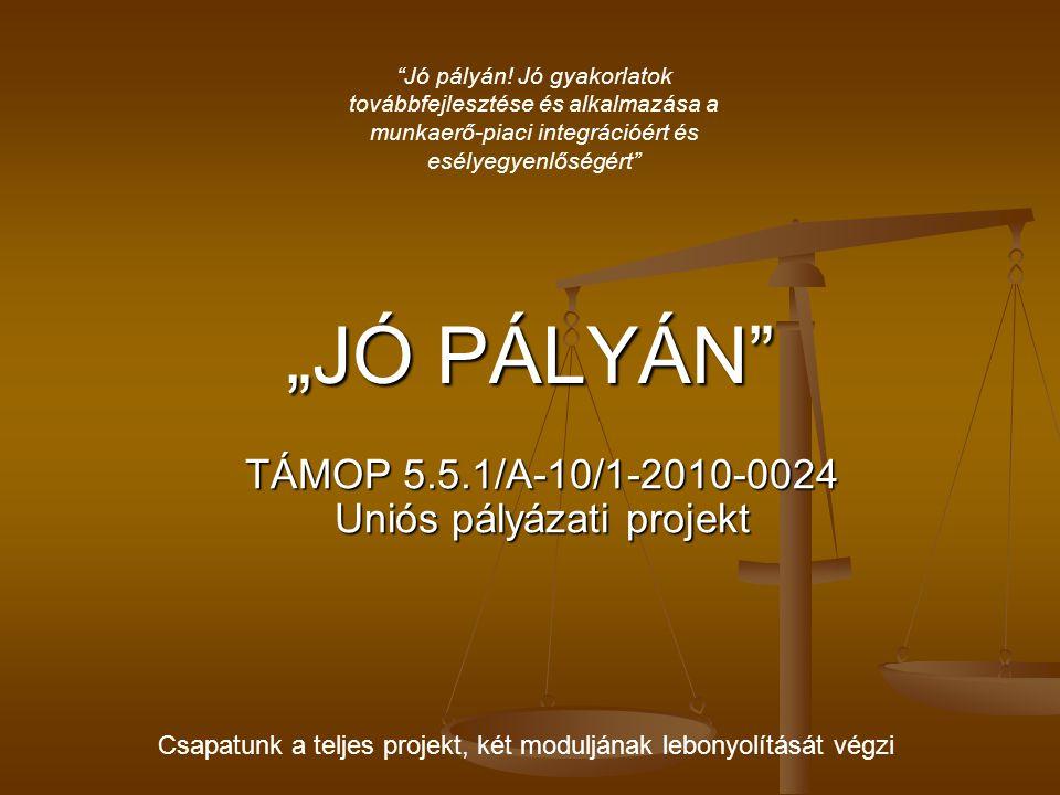 """""""JÓ PÁLYÁN"""" TÁMOP 5.5.1/A-10/1-2010-0024 Uniós pályázati projekt """"Jó pályán! Jó gyakorlatok továbbfejlesztése és alkalmazása a munkaerő-piaci integrác"""