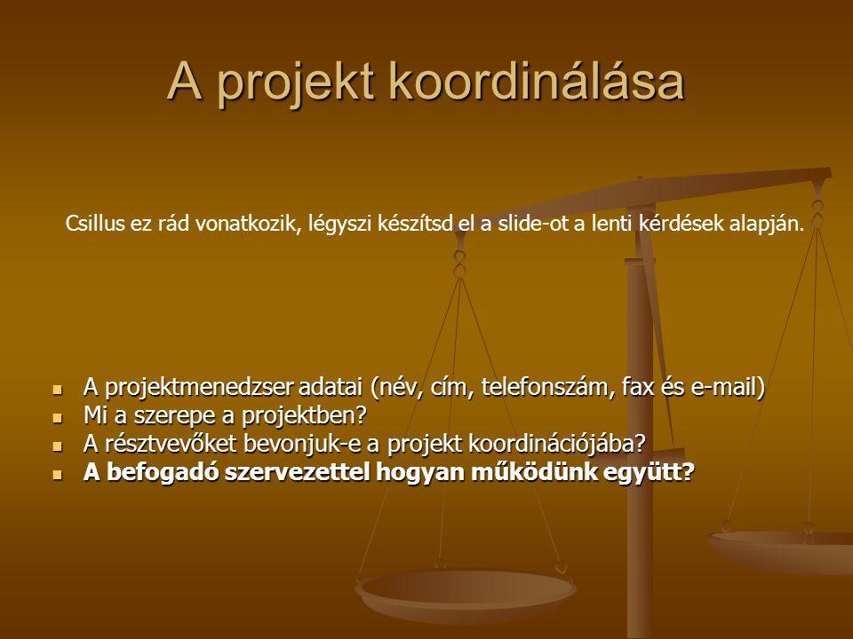 A projekt koordinálása A projektmenedzser adatai (név, cím, telefonszám, fax és e-mail) A projektmenedzser adatai (név, cím, telefonszám, fax és e-mail) Mi a szerepe a projektben.