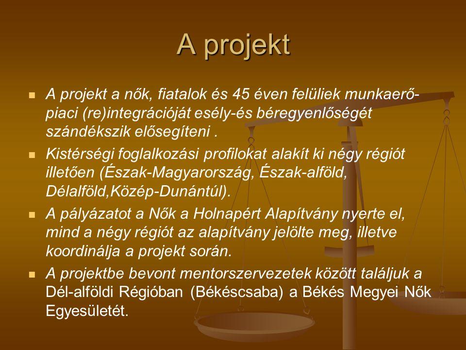 A projekt A projekt a nők, fiatalok és 45 éven felüliek munkaerő- piaci (re)integrációját esély-és béregyenlőségét szándékszik elősegíteni.
