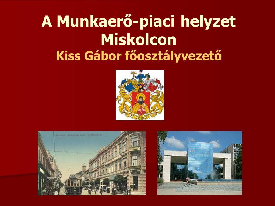 A Munkaerő-piaci helyzet Miskolcon Kiss Gábor főosztályvezető