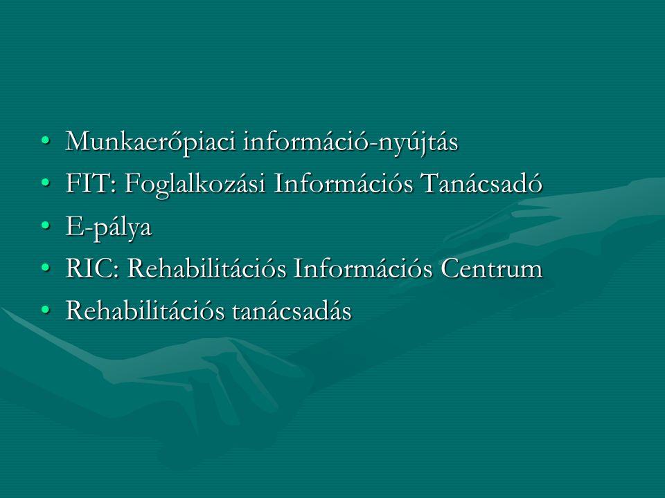 Munkaerőpiaci információ-nyújtásMunkaerőpiaci információ-nyújtás FIT: Foglalkozási Információs TanácsadóFIT: Foglalkozási Információs Tanácsadó E-pály