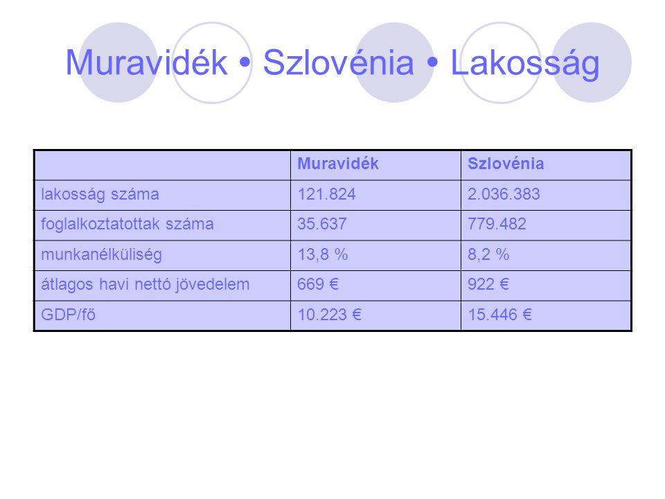 Muravidék  Szlovénia  Lakosság MuravidékSzlovénia lakosság száma121.8242.036.383 foglalkoztatottak száma35.637779.482 munkanélküliség13,8 %8,2 % átl