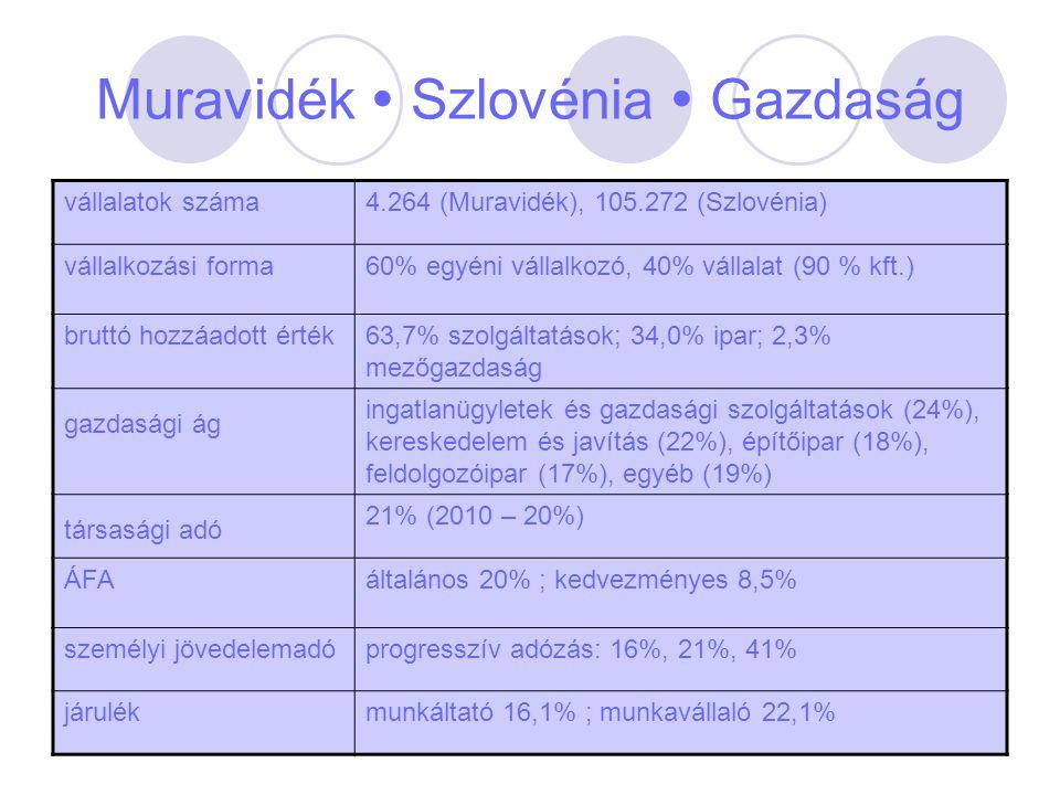 Muravidék  Szlovénia  Gazdaság vállalatok száma4.264 (Muravidék), 105.272 (Szlovénia) vállalkozási forma60% egyéni vállalkozó, 40% vállalat (90 % kf