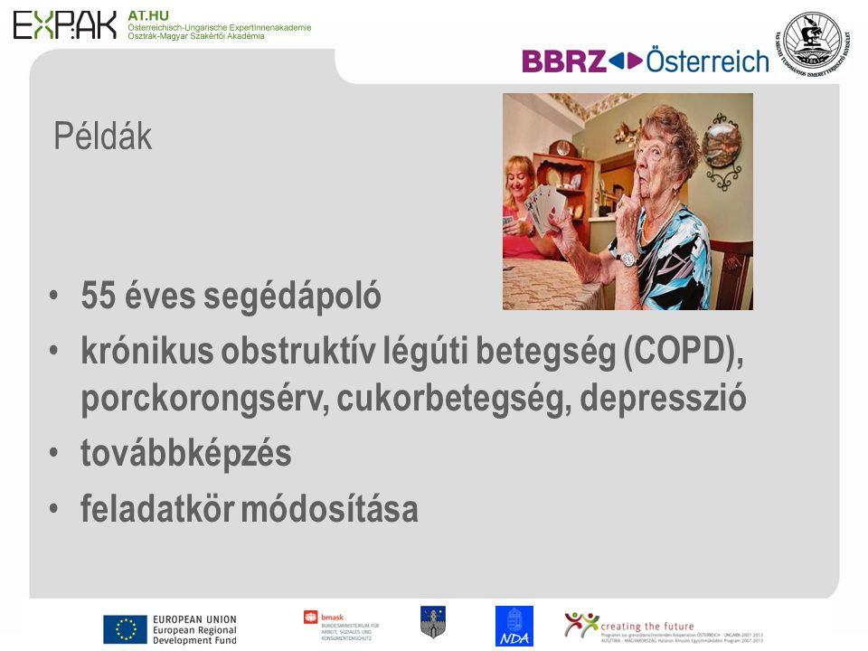 12 Példák 55 éves segédápoló krónikus obstruktív légúti betegség (COPD), porckorongsérv, cukorbetegség, depresszió továbbképzés feladatkör módosítása