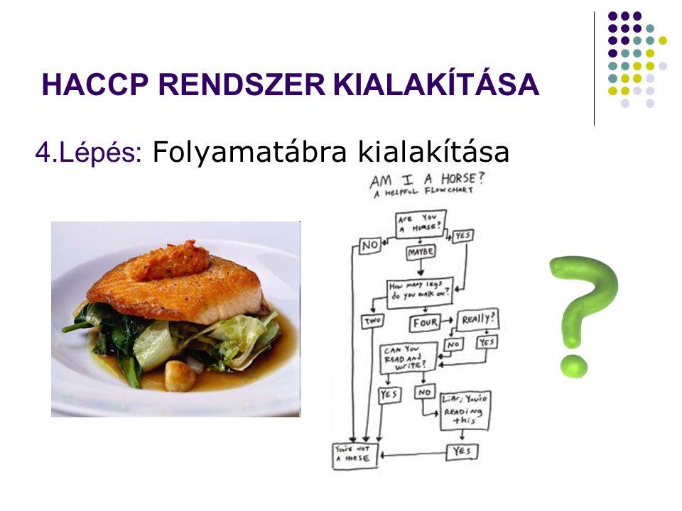 HACCP RENDSZER KIALAKÍTÁSA 4.Lépés: Folyamatábra kialakítása