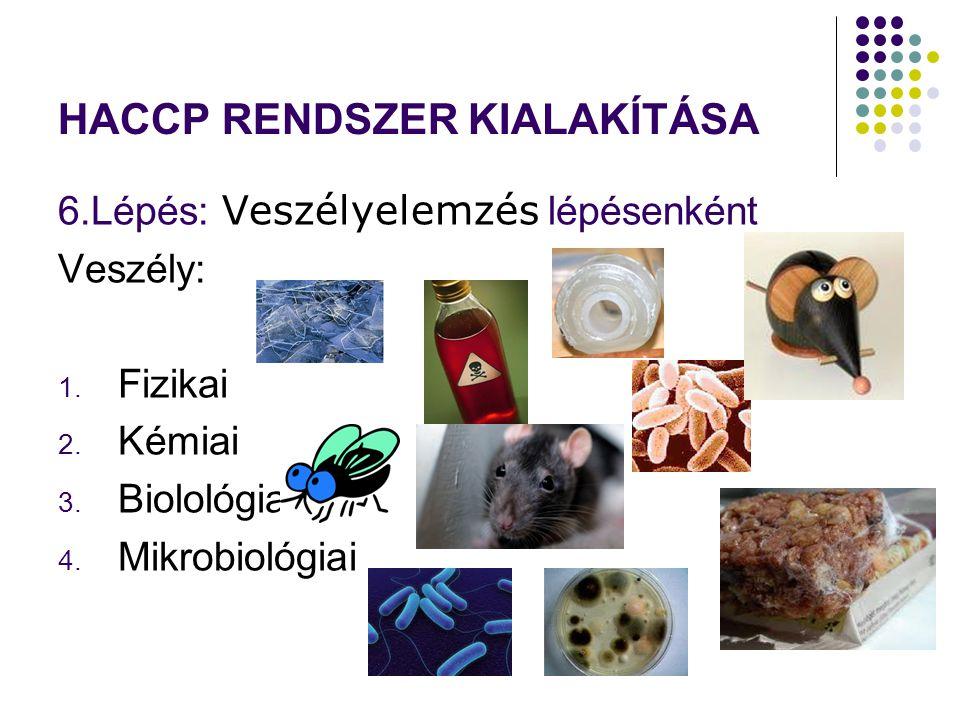 HACCP RENDSZER KIALAKÍTÁSA 6.Lépés: Veszélyelemzés lépésenként Veszély: 1. Fizikai 2. Kémiai 3. Biolológiai 4. Mikrobiológiai