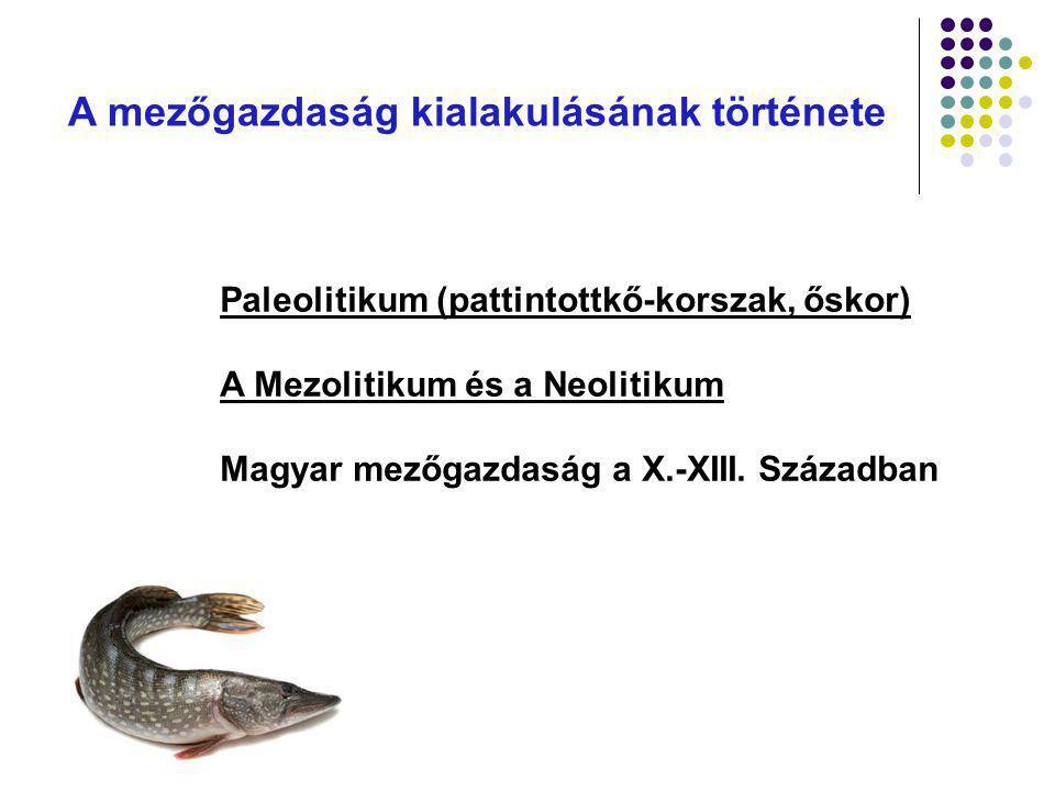 Jogszabályok ismertetése STRATEGIJA RAZVOJA POLJOPRIVREDE SRBIJE ( Sl.