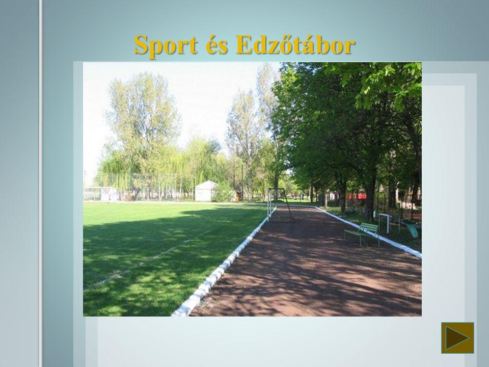 Kunfehértón a Tófürdő melletti Sporttáborban 3-4 ágyas szobákkal, futó-, és futballpályával.