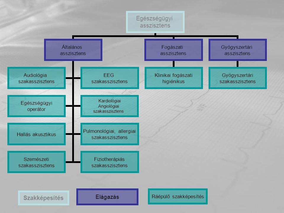 Egészségügyi asszisztens Általános asszisztens Audiológia szakasszisztens EEG szakasszisztens Egészségügyi operátor Kardiológiai Angiológiai szakasszi