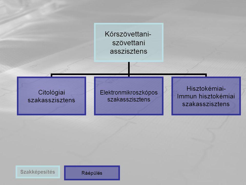 Kórszövettani- szövettani asszisztens Citológiai szakasszisztens Elektronmikroszkópos szakasszisztens Hisztokémiai- Immun hisztokémiai szakasszisztens