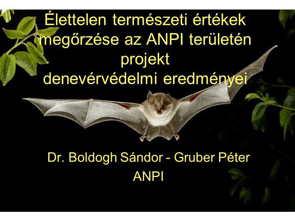 Élettelen természeti értékek megőrzése az ANPI területén projekt denevérvédelmi eredményei Dr. Boldogh Sándor - Gruber Péter ANPI