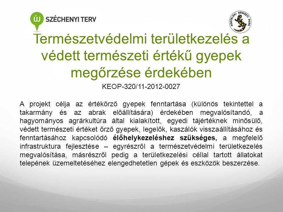 Természetvédelmi területkezelés a védett természeti értékű gyepek megőrzése érdekében A projekt célja az értékőrző gyepek fenntartása (különös tekinte