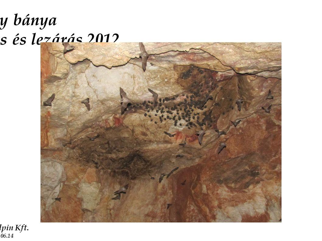 2011.10.13 Nova Alpin Kft. 2012.06.14 Bomboly bánya vágatstabilizálás és lezárás 2012