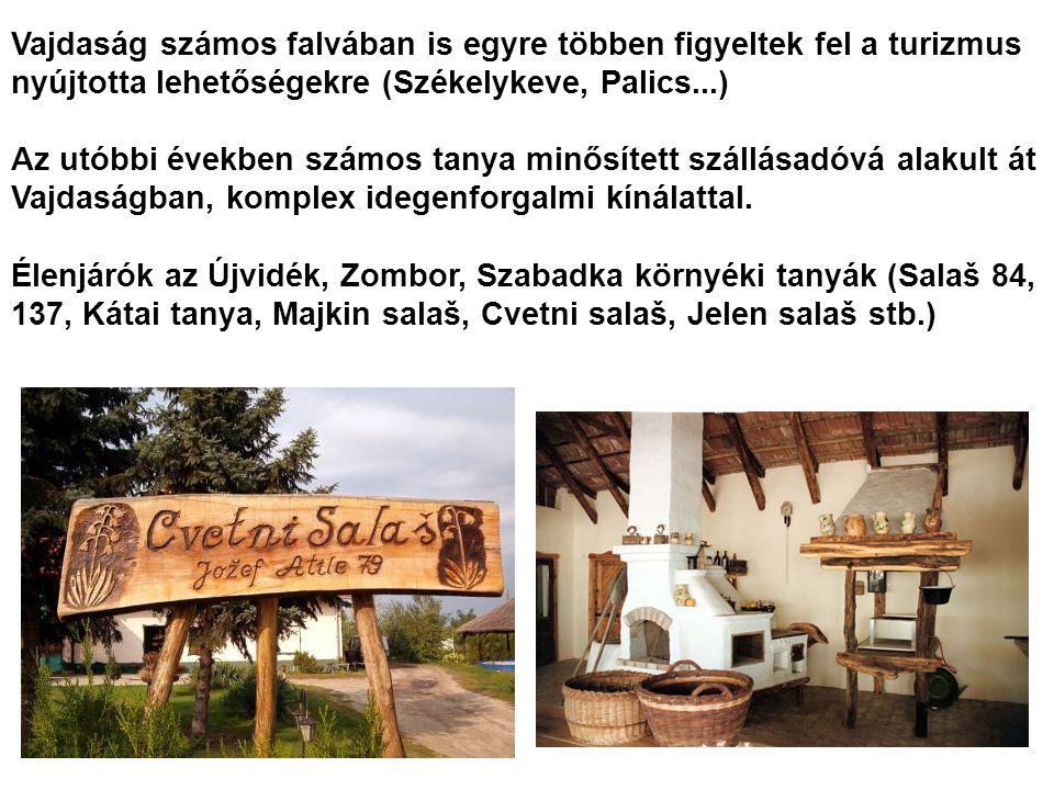 Vajdaság számos falvában is egyre többen figyeltek fel a turizmus nyújtotta lehetőségekre (Székelykeve, Palics...) Az utóbbi években számos tanya minő
