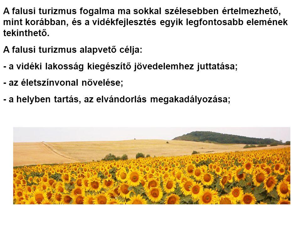 Vajdaság számos falvában is egyre többen figyeltek fel a turizmus nyújtotta lehetőségekre (Székelykeve, Palics...) Az utóbbi években számos tanya minősített szállásadóvá alakult át Vajdaságban, komplex idegenforgalmi kínálattal.