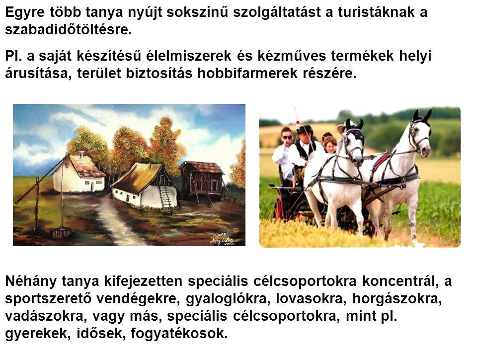 Egyre több tanya nyújt sokszínű szolgáltatást a turistáknak a szabadidőtöltésre. Pl. a saját készítésű élelmiszerek és kézműves termékek helyi árusítá