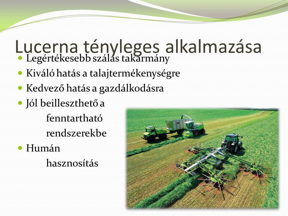 Lucerna tényleges alkalmazása Legértékesebb szálas takarmány Kiváló hatás a talajtermékenységre Kedvező hatás a gazdálkodásra Jól beilleszthető a fenn