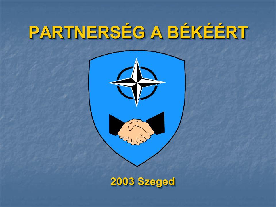 TOLMÁCS RÉSZLEG TÖRZSFŐNÖK TÖF.SEGÉDTISZT ELVI TERVEZŐ NATO ÖK.