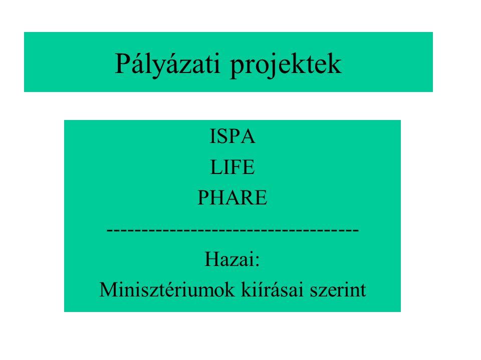 Pályázati projektek ISPA LIFE PHARE ------------------------------------ Hazai: Minisztériumok kiírásai szerint