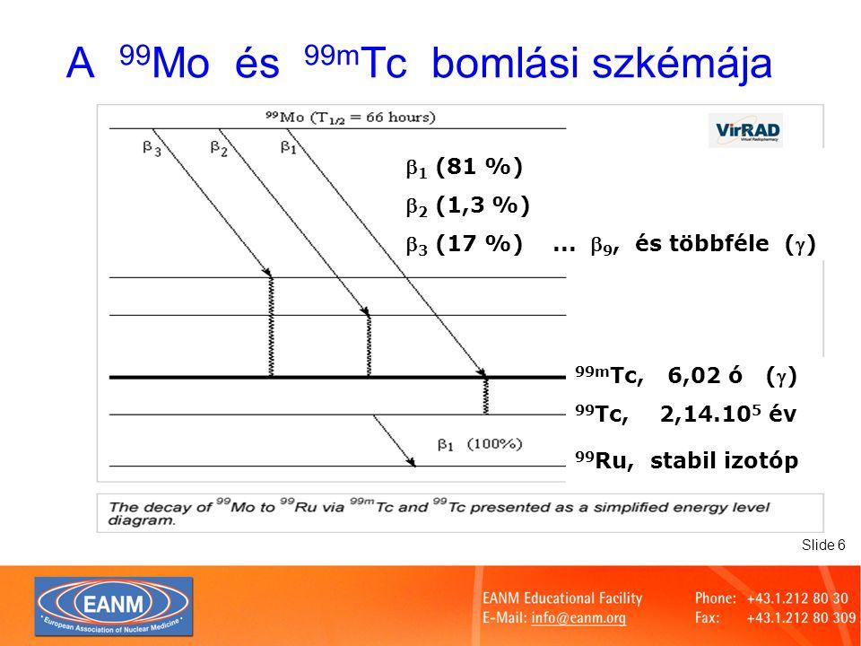 Slide 7 99 Mo / 99m Tc aktivitásának tranziens egyensúlya elméleti tranziens egyensúly, elágazó bomlás nélkül Tc-99m tranziens egyensúlya, a Mo-99 elágazó bomlása miatt