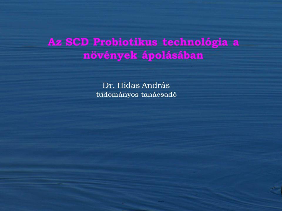 Dr. Hidas András tudományos tanácsadó Az SCD Probiotikus technológia a növények ápolásában