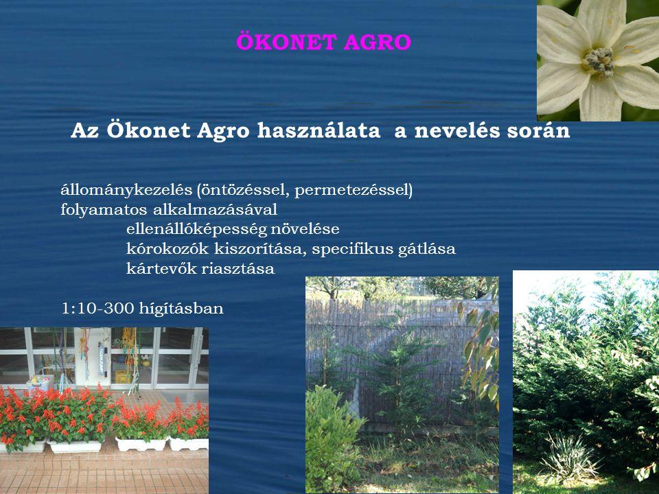 Az Ökonet Agro használata a nevelés során állománykezelés (öntözéssel, permetezéssel) folyamatos alkalmazásával ellenállóképesség növelése kórokozók k