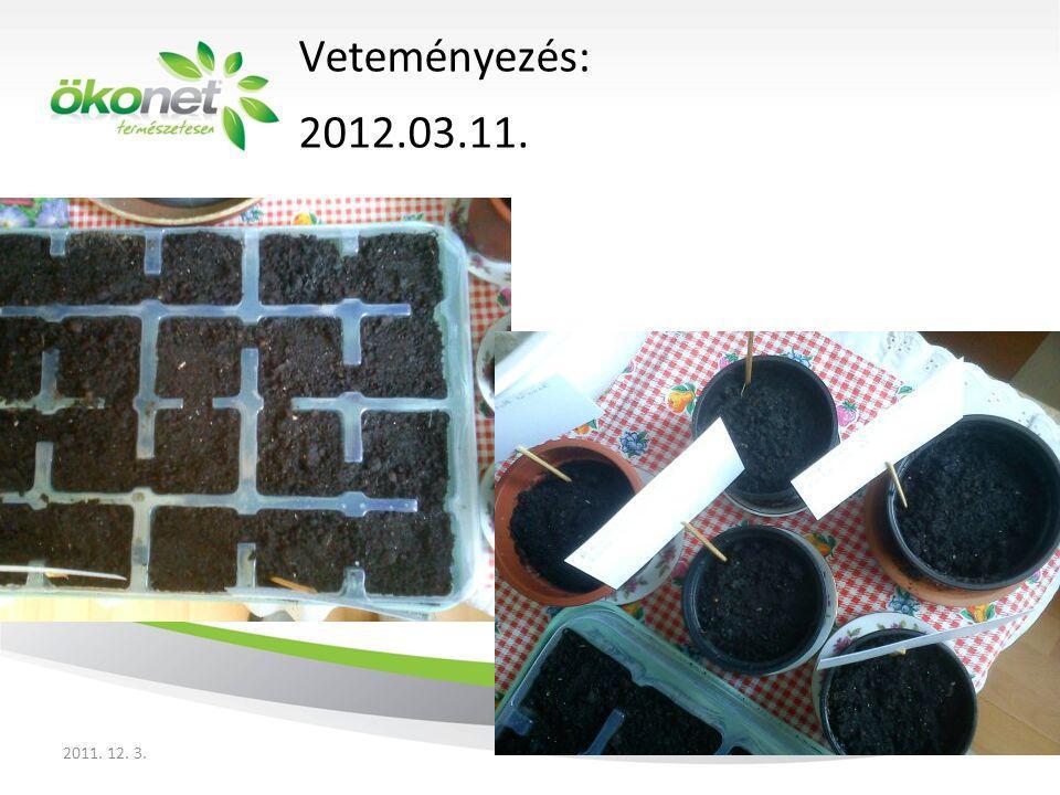 Bal oldal: rukkola tisztított vízzel locsolva Jobb oldal: rukkola A gróval locsolva Az első növények kelése: 2012.03.14.