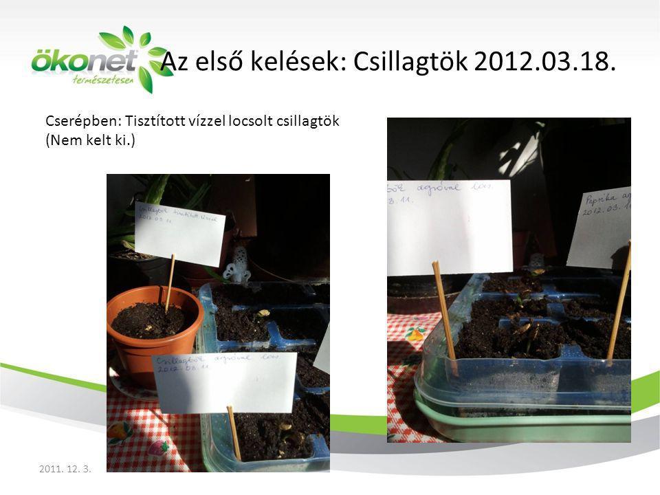 Cserépben: Tisztított vízzel locsolt csillagtök (Nem kelt ki.) 2011. 12. 3. Az első kelések: Csillagtök 2012.03.18.