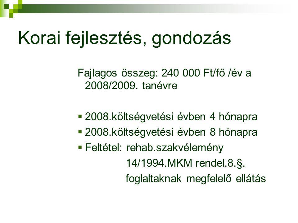 Korai fejlesztés, gondozás Fajlagos összeg: 240 000 Ft/fő /év a 2008/2009.