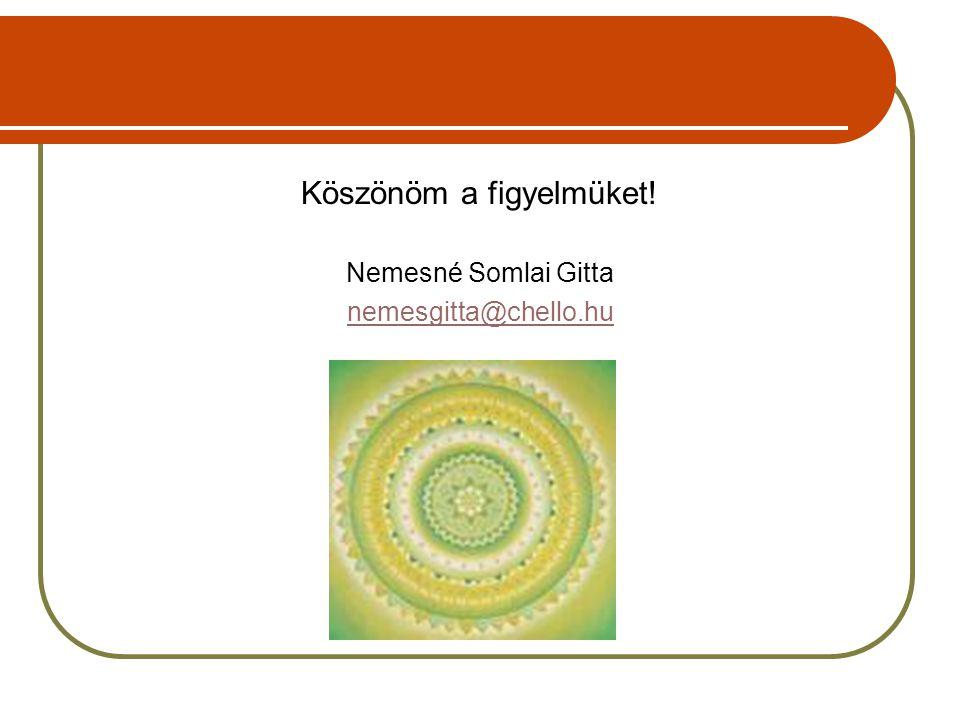 Köszönöm a figyelmüket! Nemesné Somlai Gitta nemesgitta@chello.hu
