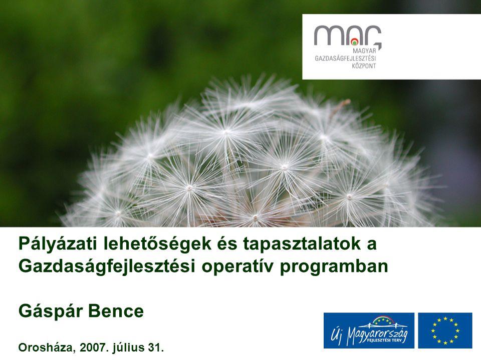 Pályázati lehetőségek és tapasztalatok a Gazdaságfejlesztési operatív programban Gáspár Bence Orosháza, 2007.