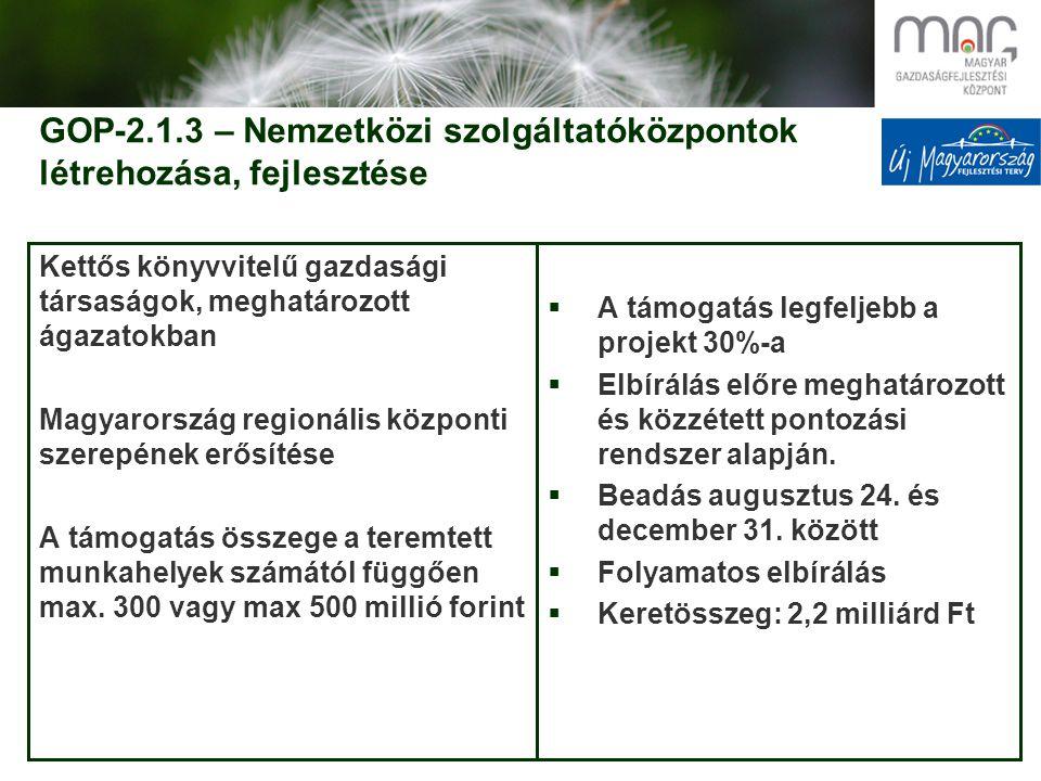 GOP-2.1.3 – Nemzetközi szolgáltatóközpontok létrehozása, fejlesztése Kettős könyvvitelű gazdasági társaságok, meghatározott ágazatokban Magyarország regionális központi szerepének erősítése A támogatás összege a teremtett munkahelyek számától függően max.