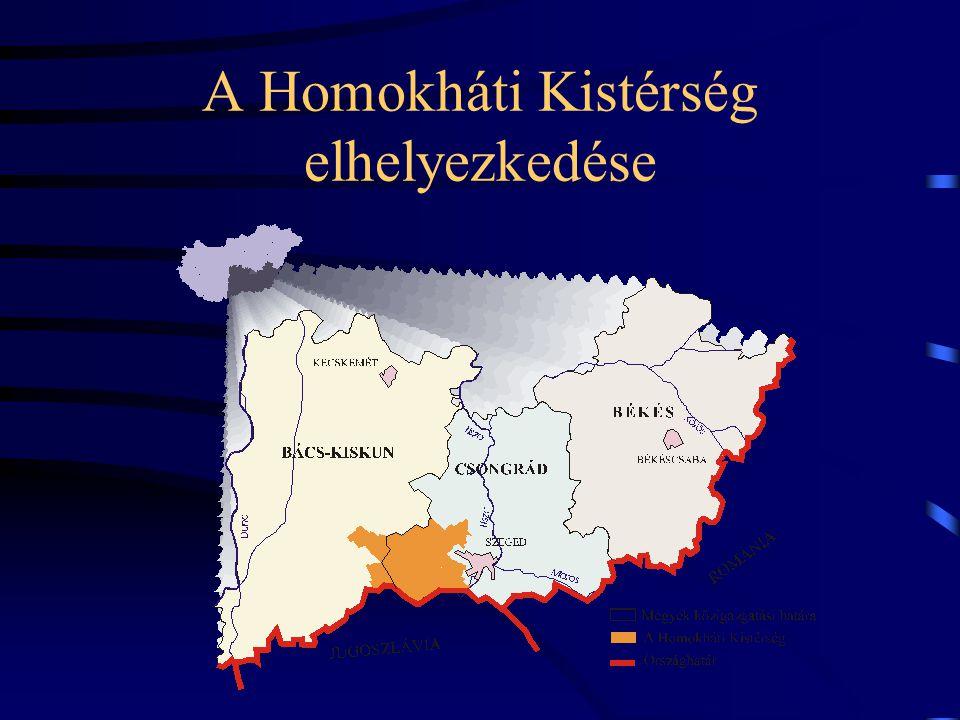 A Homokháti Kistérség elhelyezkedése