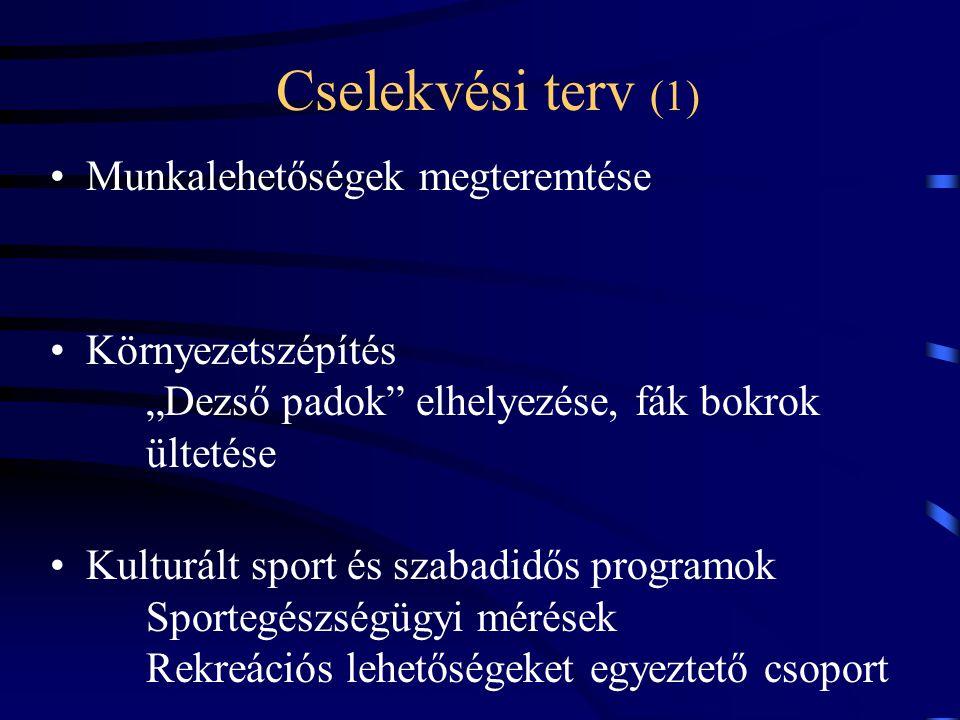"""Cselekvési terv (1) Munkalehetőségek megteremtése Környezetszépítés """"Dezső padok elhelyezése, fák bokrok ültetése Kulturált sport és szabadidős programok Sportegészségügyi mérések Rekreációs lehetőségeket egyeztető csoport"""