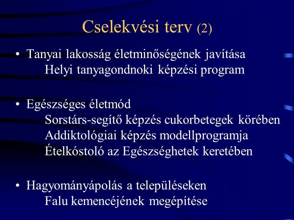 Cselekvési terv (2) Tanyai lakosság életminőségének javítása Helyi tanyagondnoki képzési program Egészséges életmód Sorstárs-segítő képzés cukorbetegek körében Addiktológiai képzés modellprogramja Ételkóstoló az Egészséghetek keretében Hagyományápolás a településeken Falu kemencéjének megépítése