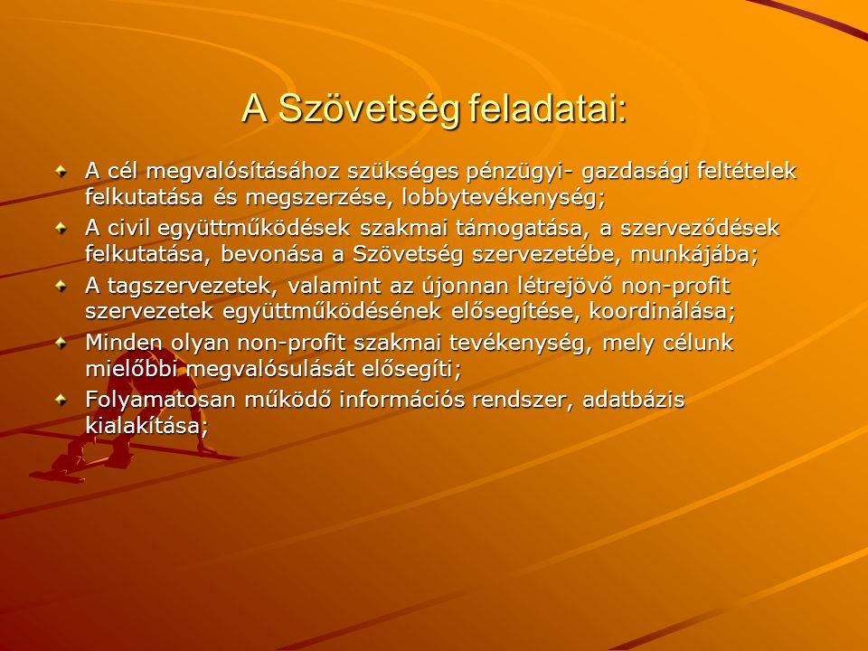 A közhasznú szervezetekről szóló 1997.évi CLVI.