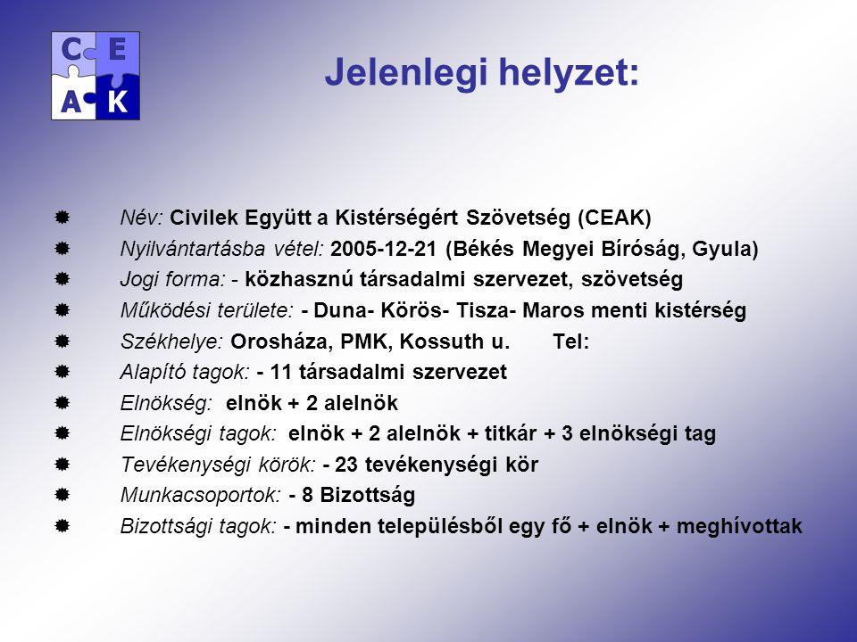 Jelenlegi helyzet:  Név: Civilek Együtt a Kistérségért Szövetség (CEAK)  Nyilvántartásba vétel: 2005-12-21 (Békés Megyei Bíróság, Gyula)  Jogi forma: - közhasznú társadalmi szervezet, szövetség  Működési területe: - Duna- Körös- Tisza- Maros menti kistérség  Székhelye: Orosháza, PMK, Kossuth u.