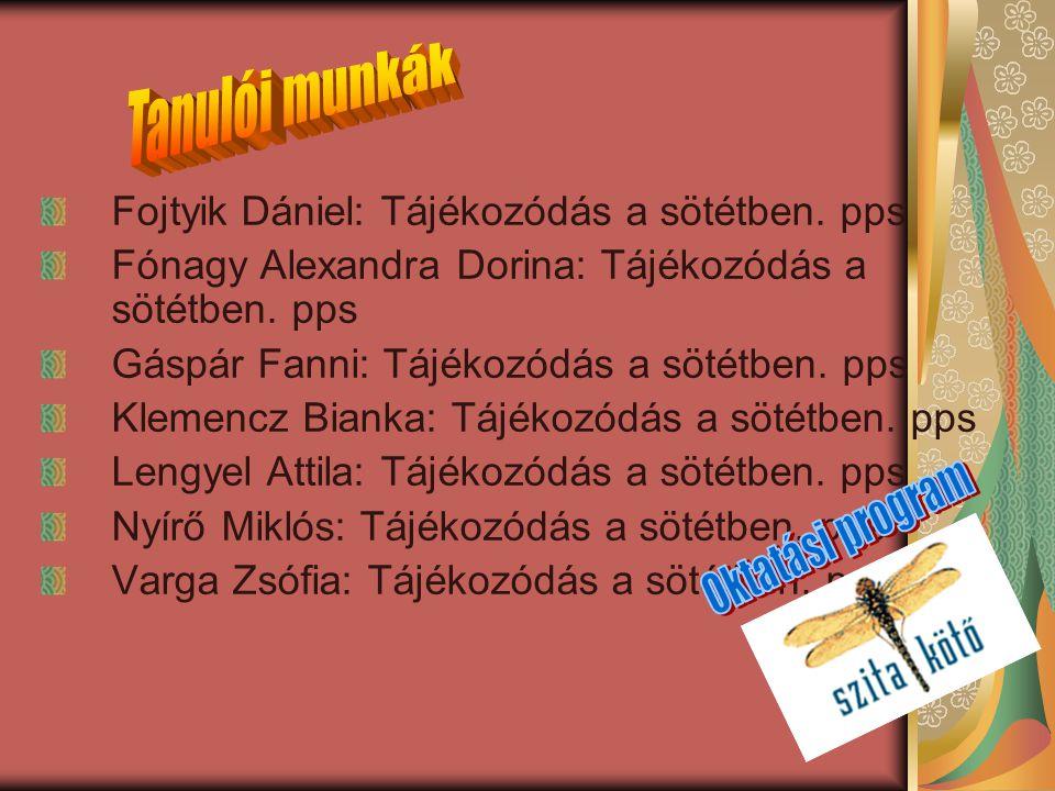 Fojtyik Dániel: Tájékozódás a sötétben. pps Fónagy Alexandra Dorina: Tájékozódás a sötétben. pps Gáspár Fanni: Tájékozódás a sötétben. pps Klemencz Bi
