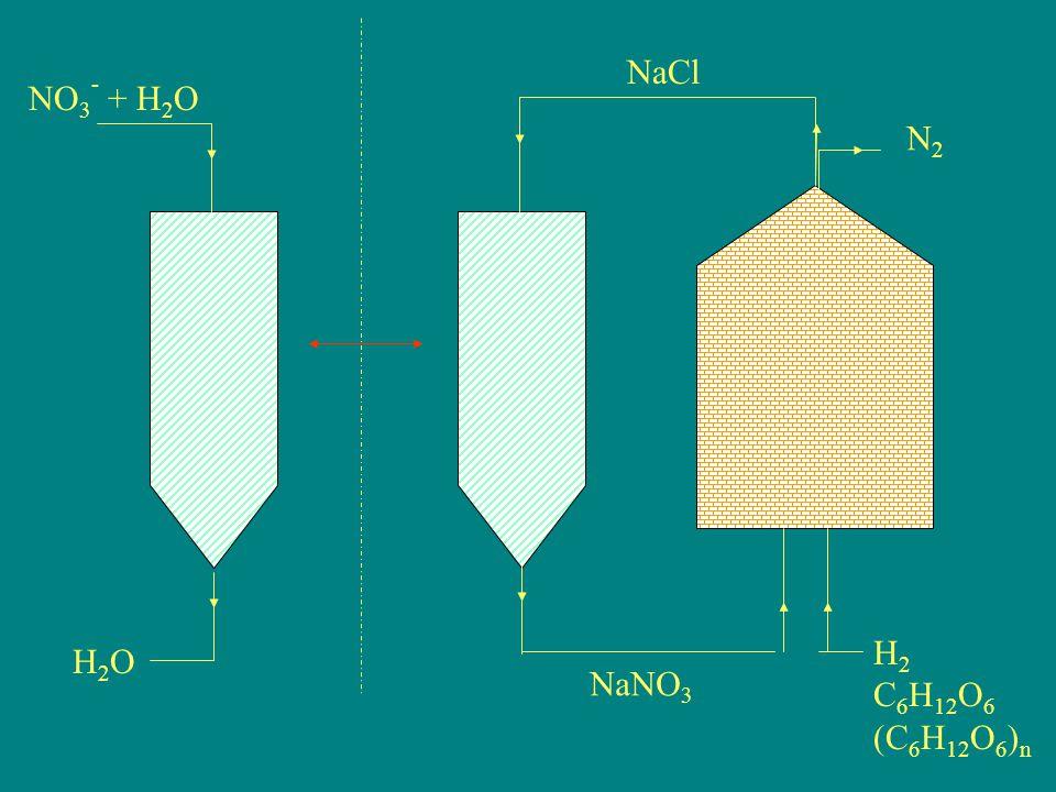 NO 3 - + H 2 O H2OH2O NaCl N2N2 NaNO 3 H 2 C 6 H 12 O 6 (C 6 H 12 O 6 ) n