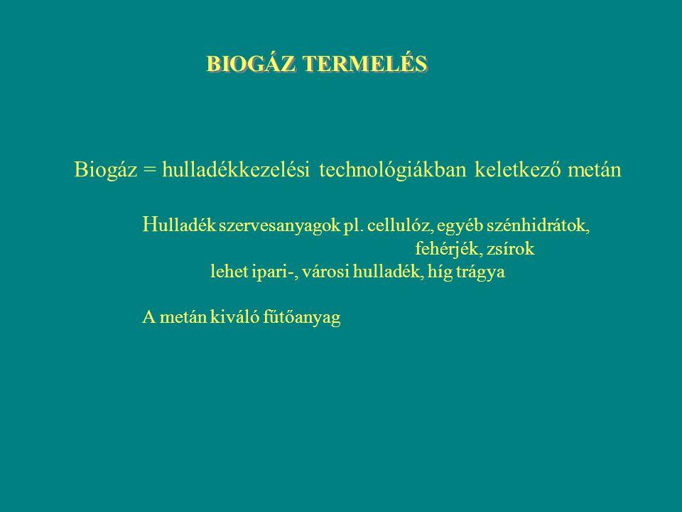 BIOGÁZ TERMELÉS Biogáz = hulladékkezelési technológiákban keletkező metán H ulladék szervesanyagok pl. cellulóz, egyéb szénhidrátok, fehérjék, zsírok