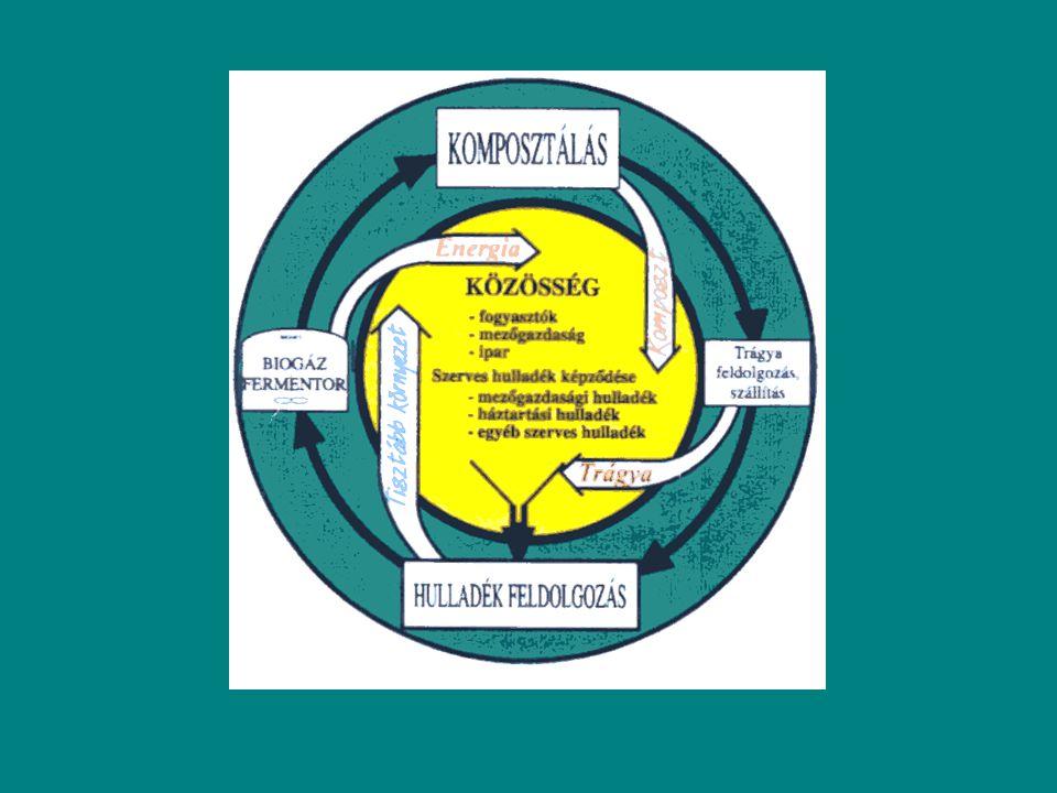 metán biomassza Polimer bontó baktériumok metanogének acetogének Szerves savak H 2 intermedierek