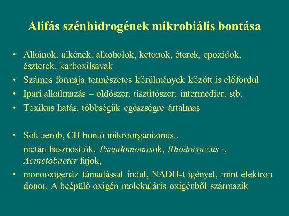 Alifás szénhidrogének mikrobiális bontása Alkánok, alkének, alkoholok, ketonok, éterek, epoxidok, észterek, karboxilsavak Számos formája természetes k