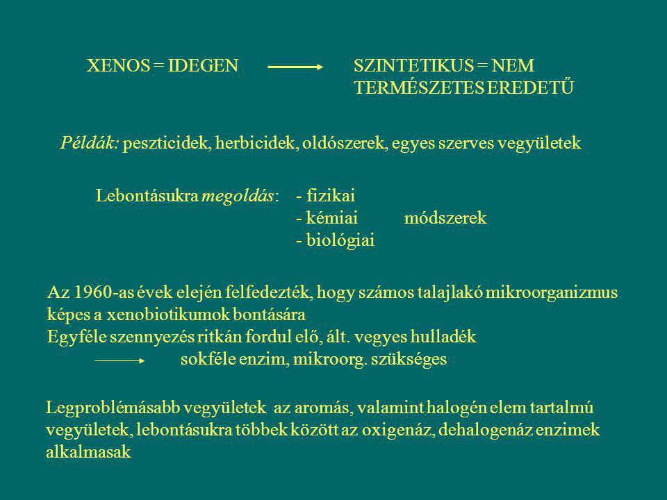 XENOS = IDEGENSZINTETIKUS = NEM TERMÉSZETES EREDETŰ Példák: peszticidek, herbicidek, oldószerek, egyes szerves vegyületek Lebontásukra megoldás: - fiz