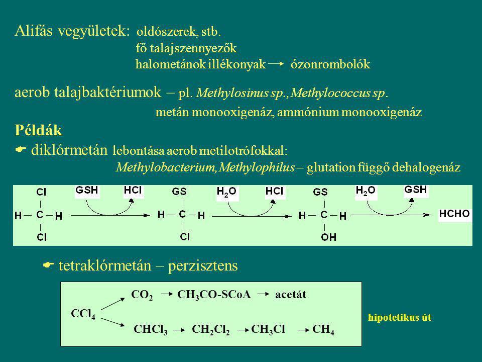 Alifás vegyületek: oldószerek, stb. fő talajszennyezők halometánok illékonyak ózonrombolók aerob talajbaktériumok – pl. Methylosinus sp.,Methylococcus