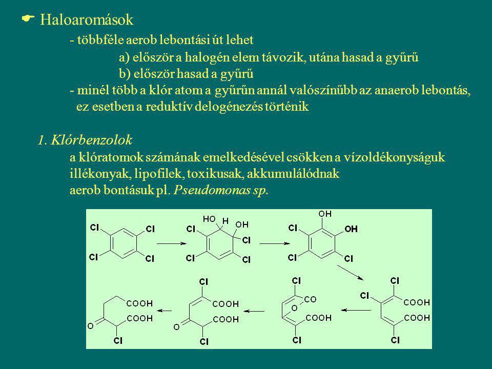  Haloaromások - többféle aerob lebontási út lehet a) először a halogén elem távozik, utána hasad a gyűrű b) először hasad a gyűrű - minél több a klór