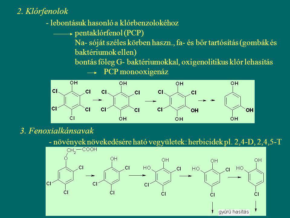 2. Klórfenolok - lebontásuk hasonló a klórbenzolokéhoz pentaklórfenol (PCP) Na- sóját széles körben haszn., fa- és bőr tartósítás (gombák és baktérium